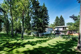 Photo 46: 10907 WILLOWFERN Drive SE in Calgary: Willow Park Detached for sale : MLS®# C4304944