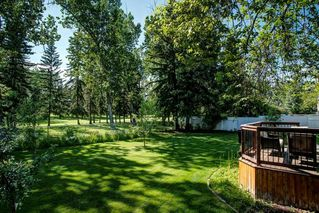 Photo 43: 10907 WILLOWFERN Drive SE in Calgary: Willow Park Detached for sale : MLS®# C4304944