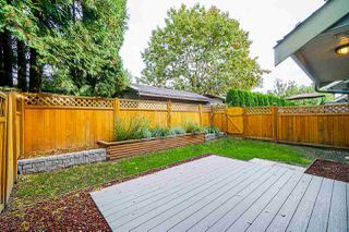"""Photo 29: 15 22977 116 Avenue in Maple Ridge: East Central Townhouse for sale in """"Duet"""" : MLS®# R2509222"""