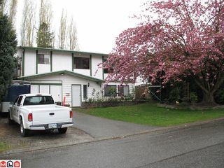 Photo 1: 32164 MOUAT Drive in Abbotsford: Abbotsford West House for sale : MLS®# F1010542