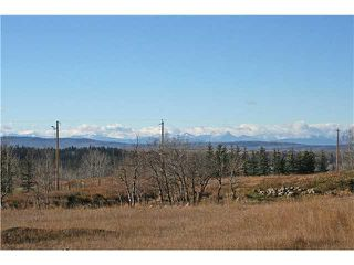 Photo 19: 20 Grandview Rise in CALGARY: Rural Rocky View MD Residential Detached Single Family for sale : MLS®# C3456497