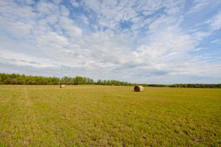 "Photo 4: 265A N BERGEN Road in Fort St. John: Fort St. John - Rural E 100th Land for sale in ""ROSE PRAIRIE"" (Fort St. John (Zone 60))  : MLS®# R2406137"