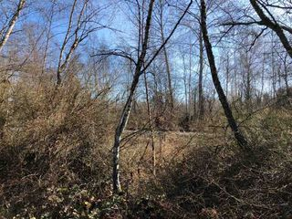 Photo 2: LOT 24 SHELL Road in Richmond: McLennan North Land for sale : MLS®# R2467152