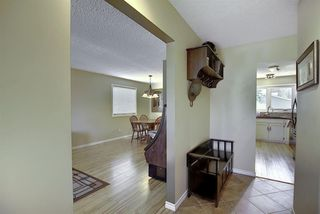 Photo 13: 408 QUEENSLAND Circle SE in Calgary: Queensland Detached for sale : MLS®# A1020270