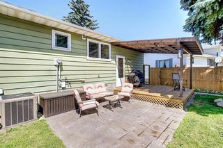 Photo 36: 408 QUEENSLAND Circle SE in Calgary: Queensland Detached for sale : MLS®# A1020270