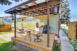 Photo 34: 408 QUEENSLAND Circle SE in Calgary: Queensland Detached for sale : MLS®# A1020270