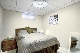 Photo 28: 408 QUEENSLAND Circle SE in Calgary: Queensland Detached for sale : MLS®# A1020270