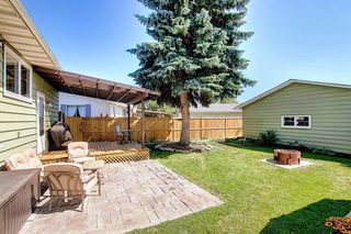 Photo 35: 408 QUEENSLAND Circle SE in Calgary: Queensland Detached for sale : MLS®# A1020270