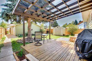 Photo 33: 408 QUEENSLAND Circle SE in Calgary: Queensland Detached for sale : MLS®# A1020270