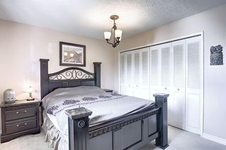 Photo 16: 408 QUEENSLAND Circle SE in Calgary: Queensland Detached for sale : MLS®# A1020270
