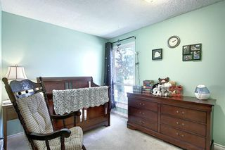 Photo 19: 408 QUEENSLAND Circle SE in Calgary: Queensland Detached for sale : MLS®# A1020270