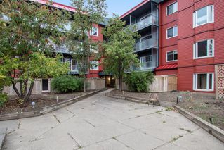 Photo 1: 318 333 GARRY Crescent NE in Calgary: Greenview Apartment for sale : MLS®# A1035782