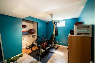 Photo 26: 29 Burnham Place: St. Albert House for sale : MLS®# E4216048