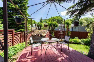Photo 30: 29 Burnham Place: St. Albert House for sale : MLS®# E4216048