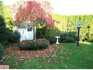 """Photo 10: 5642 SUNDALE Grove in Surrey: Cloverdale BC House for sale in """"SUNRISE ESTATES"""" (Cloverdale)  : MLS®# F1027237"""