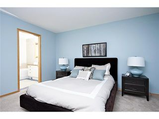 Photo 20: 12 MEADOW Close: Cochrane Residential Detached Single Family for sale : MLS®# C3452249