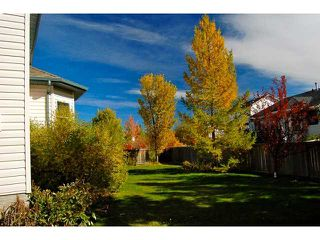 Photo 30: 12 MEADOW Close: Cochrane Residential Detached Single Family for sale : MLS®# C3452249