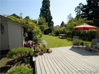 Photo 14: 1315 Balmoral Rd in VICTORIA: Vi Fernwood House for sale (Victoria)  : MLS®# 504233