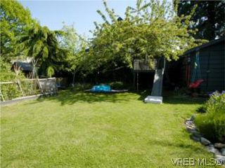Photo 19: 1315 Balmoral Rd in VICTORIA: Vi Fernwood House for sale (Victoria)  : MLS®# 504233