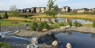 Photo 26: 22403 80 Avenue in Edmonton: Zone 58 House Half Duplex for sale : MLS®# E4166262