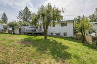 Photo 20: 34079 FRASER Street in Abbotsford: Central Abbotsford House for sale : MLS®# R2398789