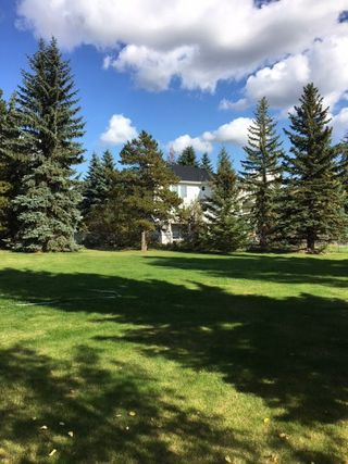 Photo 7: 686 Estates Drive: Sherwood Park House for sale : MLS®# E4193133