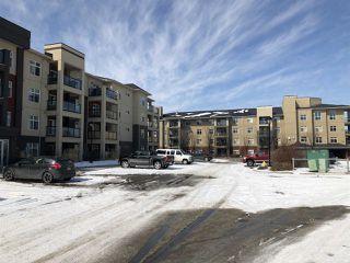 Photo 1: 349 7805 71 Street in Edmonton: Zone 17 Condo for sale : MLS®# E4193875