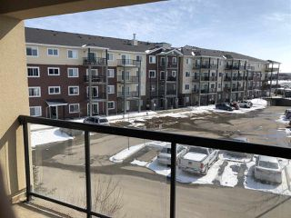 Photo 10: 349 7805 71 Street in Edmonton: Zone 17 Condo for sale : MLS®# E4193875