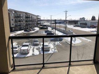 Photo 11: 349 7805 71 Street in Edmonton: Zone 17 Condo for sale : MLS®# E4193875