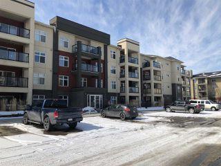 Photo 13: 349 7805 71 Street in Edmonton: Zone 17 Condo for sale : MLS®# E4193875