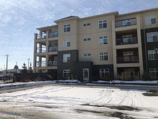 Photo 12: 349 7805 71 Street in Edmonton: Zone 17 Condo for sale : MLS®# E4193875