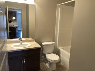Photo 8: 349 7805 71 Street in Edmonton: Zone 17 Condo for sale : MLS®# E4193875
