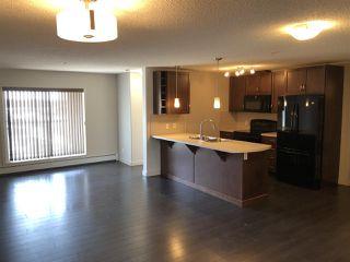 Photo 2: 349 7805 71 Street in Edmonton: Zone 17 Condo for sale : MLS®# E4193875