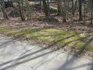 Photo 3: 793 Waverley Road in Waverley: 14-Dartmouth Montebello, Port Wallis, Keystone Vacant Land for sale (Halifax-Dartmouth)  : MLS®# 202007780