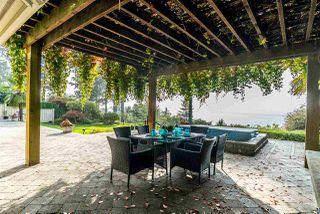 Photo 8: 755 GLENWOOD Drive in Delta: English Bluff House for sale (Tsawwassen)  : MLS®# R2499225