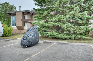 Photo 18: 103 RUNDLEWOOD Lane NE in Calgary: Rundle Semi Detached for sale : MLS®# A1036355