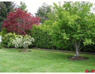 "Photo 3: 14428 18A Avenue in Surrey: Sunnyside Park Surrey House for sale in ""SUNNYSIDE PARK"" (South Surrey White Rock)  : MLS®# F2910851"