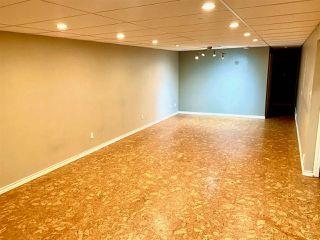 Photo 11: 8351 151 Street in Edmonton: Zone 22 House for sale : MLS®# E4181575