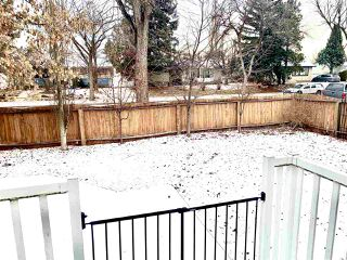 Photo 24: 8351 151 Street in Edmonton: Zone 22 House for sale : MLS®# E4181575