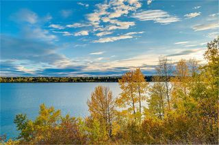 Photo 47: 6124 LEWIS Drive SW in Calgary: Lakeview Detached for sale : MLS®# C4293385