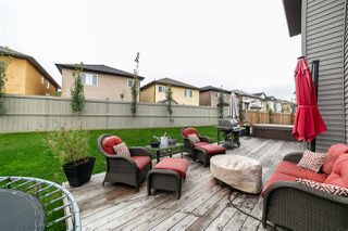 Photo 38: 16303 135 Street in Edmonton: Zone 27 House for sale : MLS®# E4203669