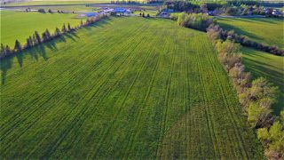 Photo 8: Lot Junction Road in Middleton: 400-Annapolis County Farm for sale (Annapolis Valley)  : MLS®# 201920425