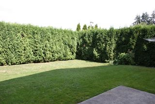 Photo 26: 33295 NEWLANDS Avenue in Abbotsford: Central Abbotsford House for sale : MLS®# F2917487