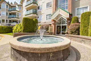 "Photo 20: 205 3680 BANFF Court in North Vancouver: Northlands Condo for sale in ""Parkgate Manor"" : MLS®# R2404081"