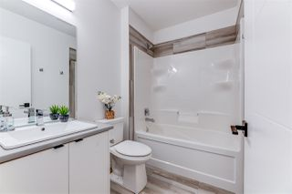 Photo 25:  in Edmonton: Zone 18 House for sale : MLS®# E4175080