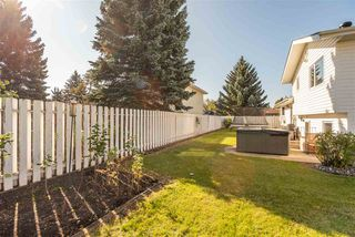 Photo 3: 14715 RIVERBEND Road in Edmonton: Zone 14 House for sale : MLS®# E4176185