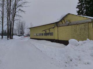 Photo 6: 24870 ISLE PIERRE - REID LAKE Road in Prince George: Nukko Lake House for sale (PG Rural North (Zone 76))  : MLS®# R2427392