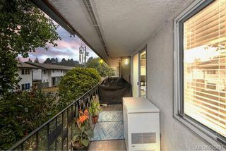 Photo 37: 3538 Tillicum Rd in : SW Tillicum Condo for sale (Saanich West)  : MLS®# 855897