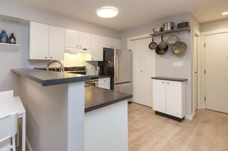 Photo 7: 106 827 North Park St in : Vi Central Park Condo for sale (Victoria)  : MLS®# 855094