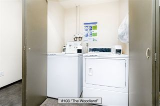 "Photo 16: 103 1540 E 4TH Avenue in Vancouver: Grandview Woodland Condo for sale in ""The Woodland"" (Vancouver East)  : MLS®# R2424218"